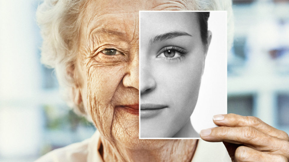 Is This Why We Age? A Primer On The Hallmarks Of Ageing - Gowing Life